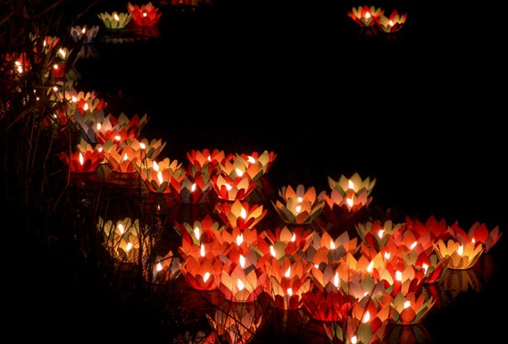 Lampion Air Bunga Lotus